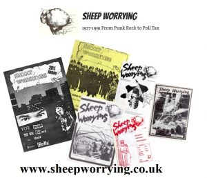 sheep worrying